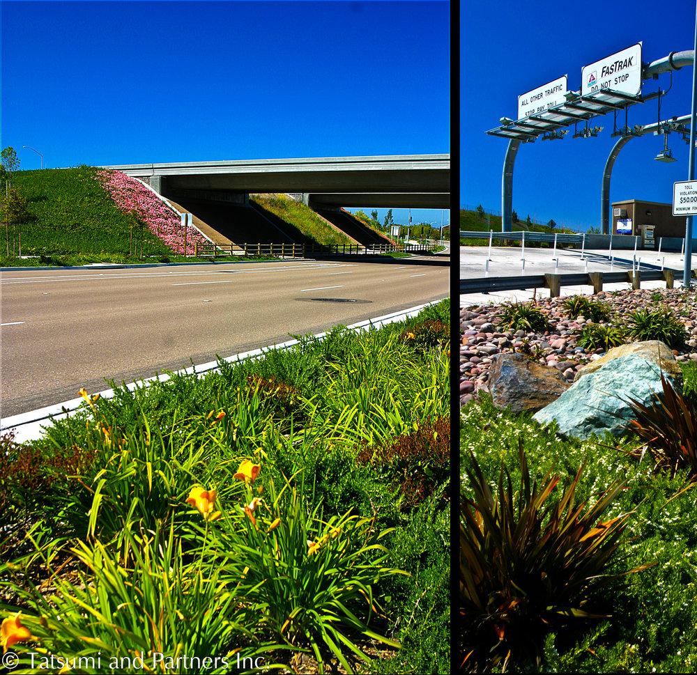 Highway_SR125_Landscape 6.jpg