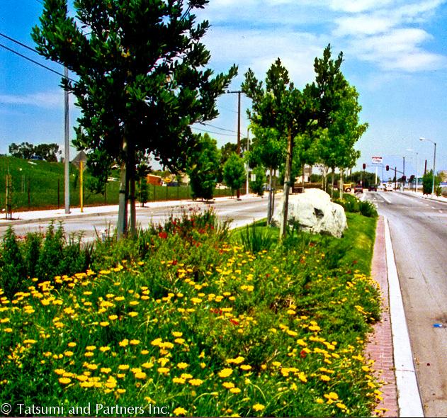Street_Carson median_Landscape 3.jpg