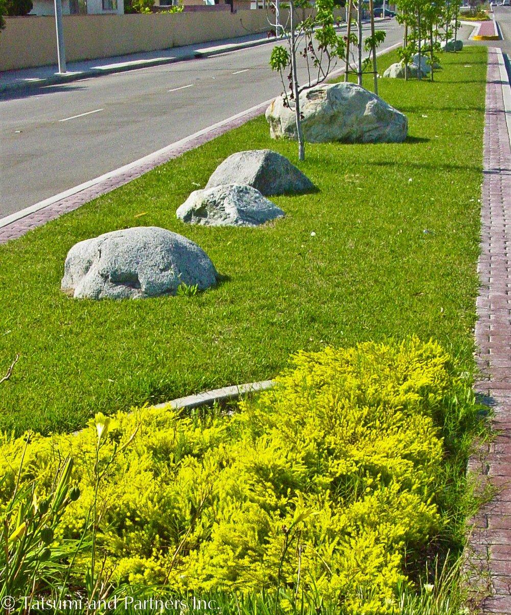 Street_Carson median_Landscape 1.jpg
