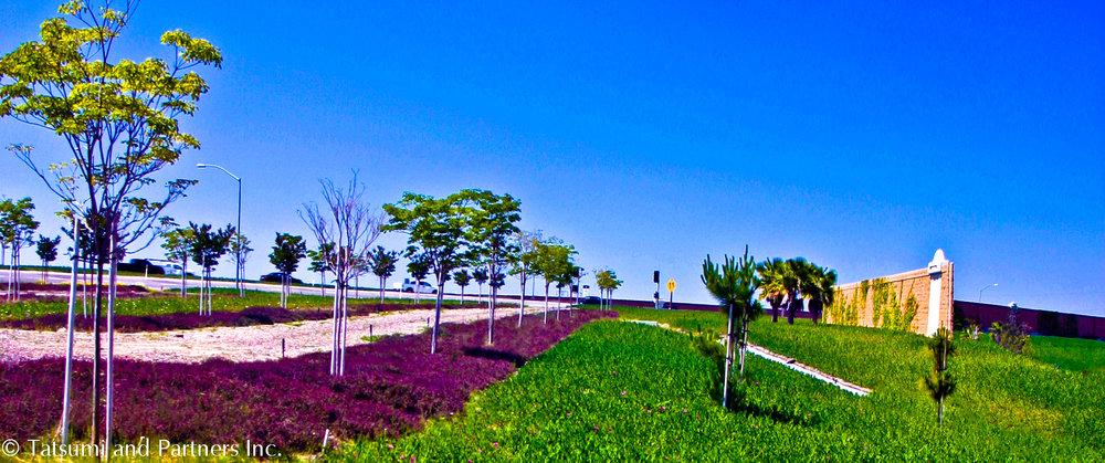Highway_SR22_Landscape 1.jpg