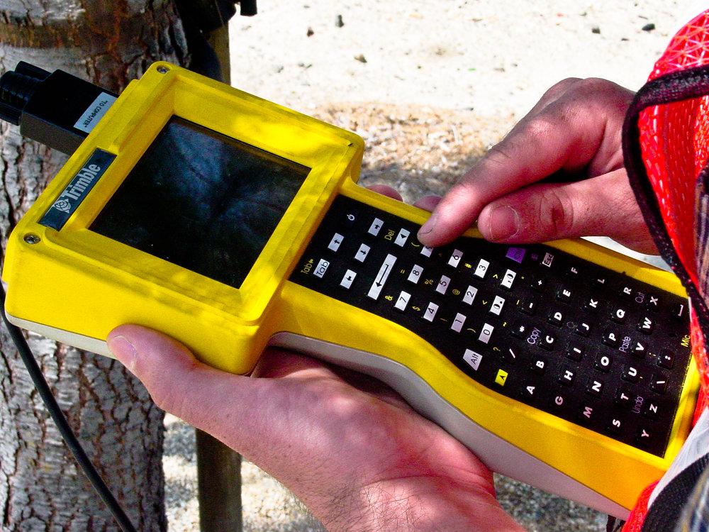 GPS Tree Inventory 092.jpg