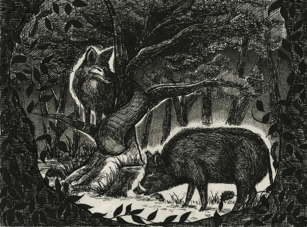 Wild Boar and Fox