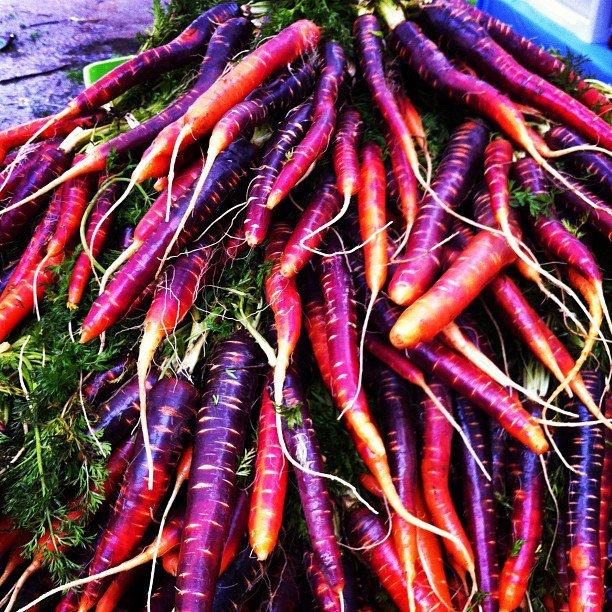 purple carrot pic.jpg