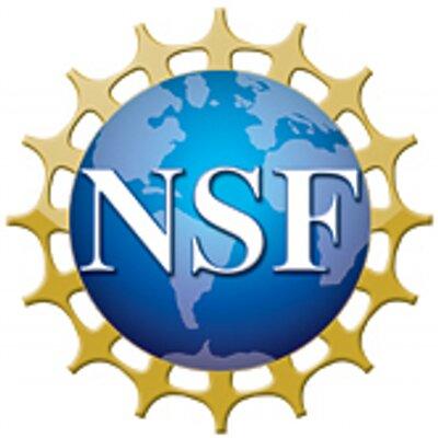 nsf1_400x400.jpg