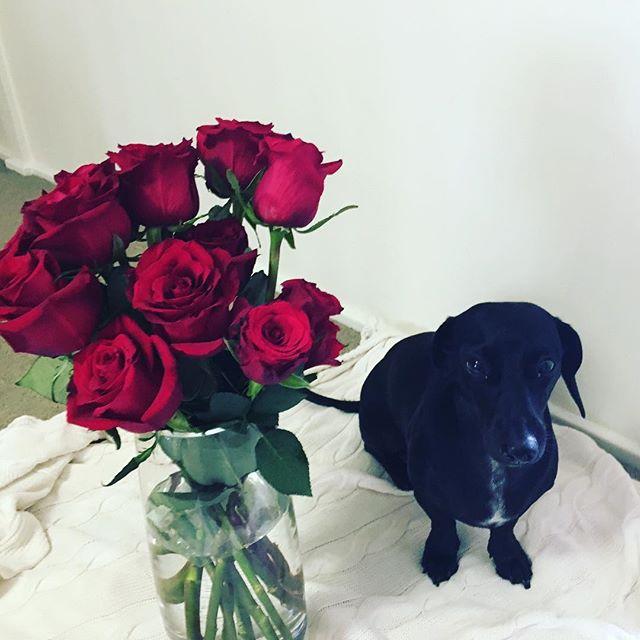 Happy Valentines Day friends!