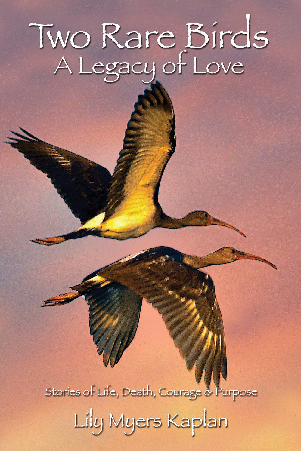 Click HERE to purchase Two Rare Birds on Amazon.com