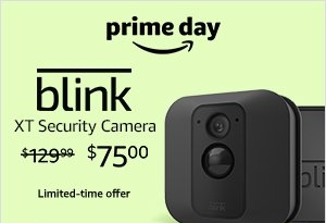blink security camera.jpg