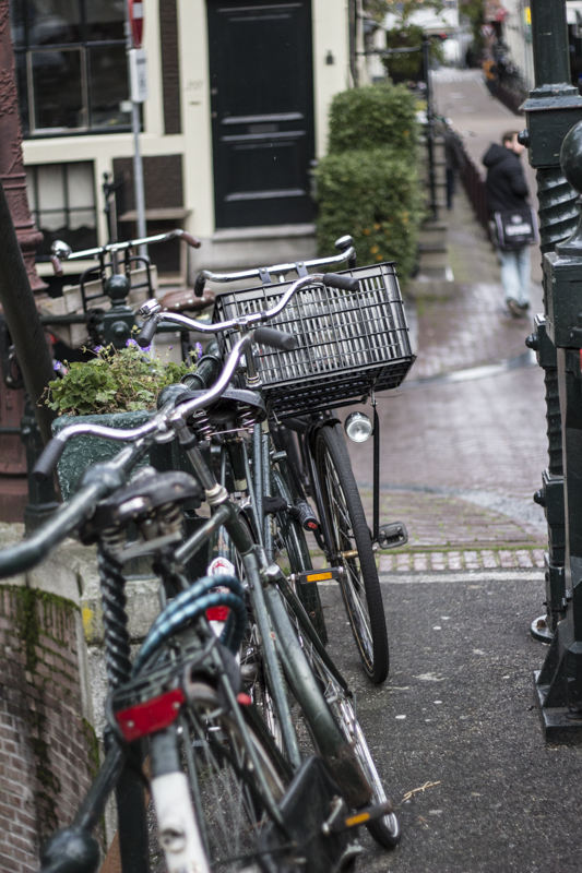 Bicyclists in Amsterdam