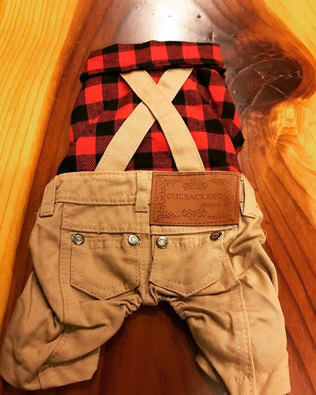 Little lumberjack outfits for your fur babies. #PATC 🖤🐾 . . . #winterfashion #petfashion #fashion #itsalifestyle #lifestylepost #lifestyle #dogsofinstagram #catsofinstagram #furbaby #animallover #animalrescue #dogwalker #doggydaycare #crownheights #brooklyn #newyork #petlovers #petshop #petstore  #groomersofinstagram  #petsittersofinstagram #dogwalkersofinstagram #animaltips #funfacts #funnyjokes #animaljokes