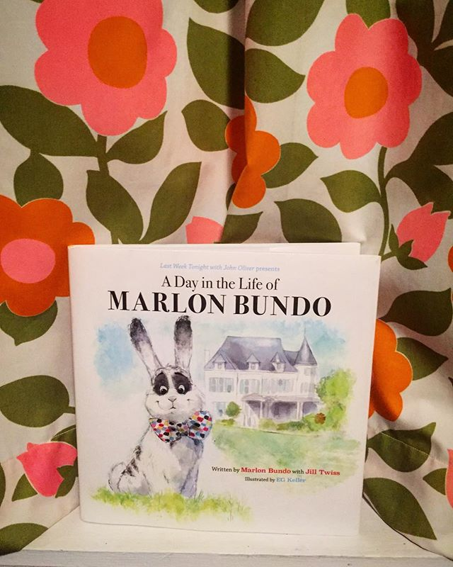 Newest addition to our library - have you heard of #marlonbundo the bunny rabbit and his love Wesley? 🐰❤️🧡💛💚💙🐰 #marriageequality #johnoliver #bootostinkbugs #hooraytobunnylove