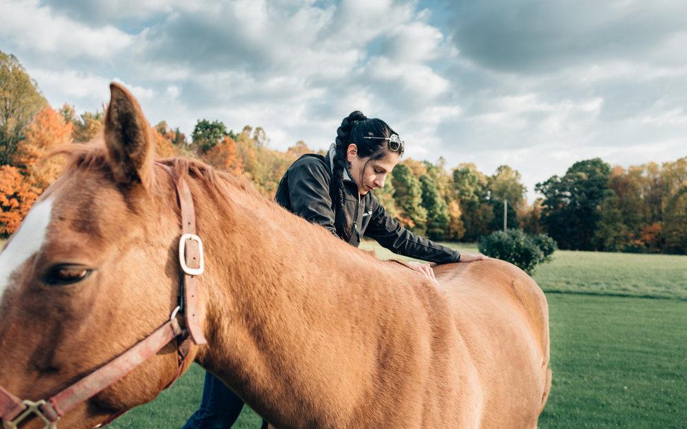 20161022_horseandshop-195.jpg