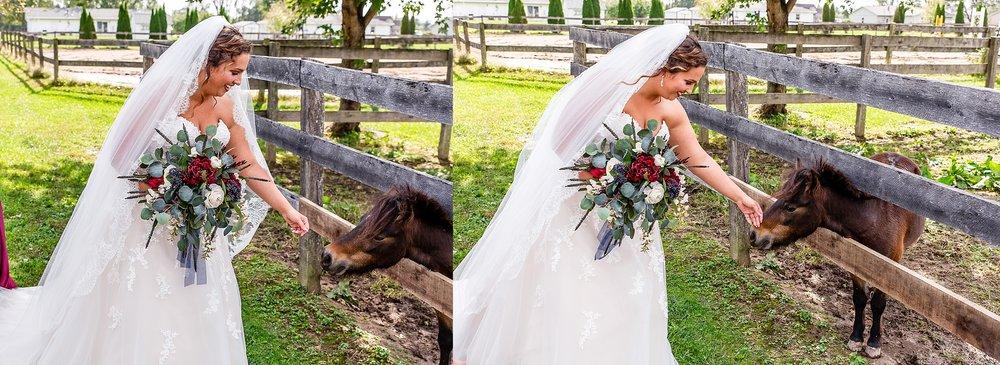 crown haven center lafayette indiana wedding_0211.jpg