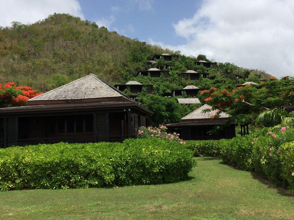 Wanderlust-blog-Hermitage Bay-hilside