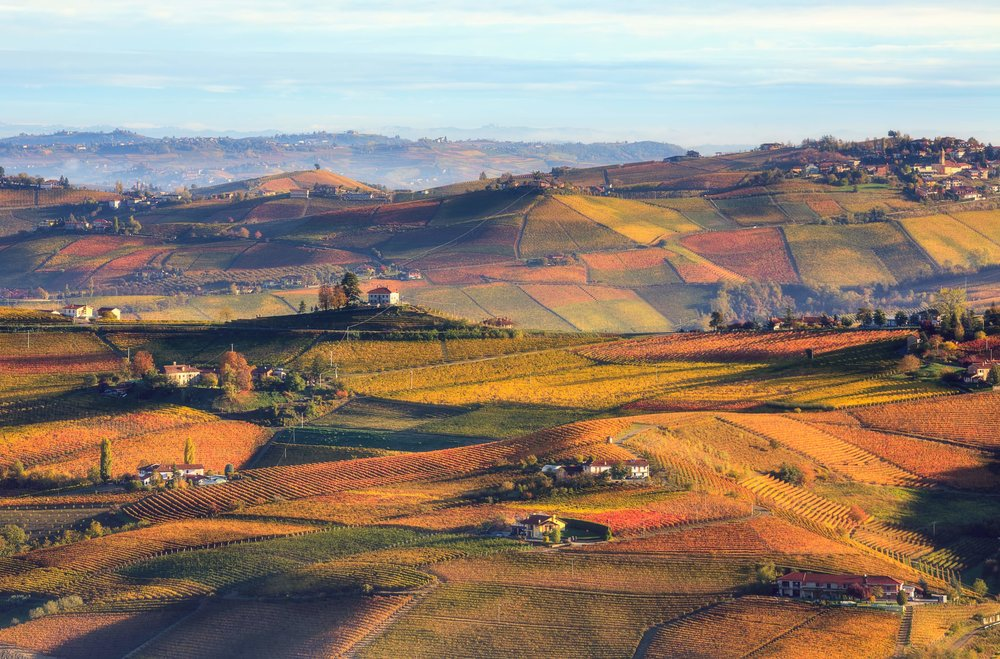 Wanderlust-blog-wine-tour-piedmont