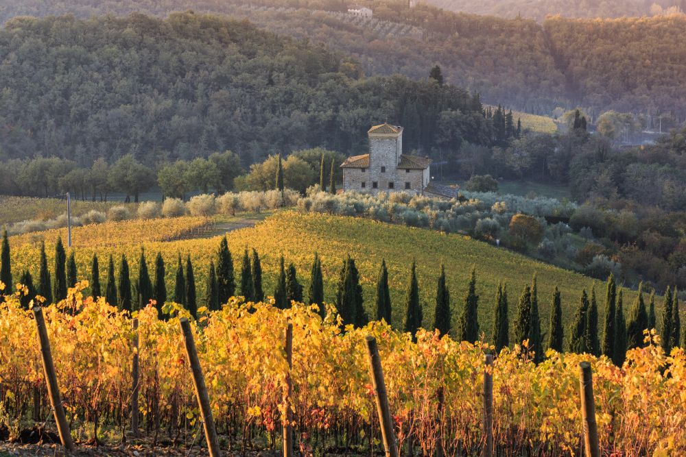Wanderlust-blog-wine-tour-Tuscany