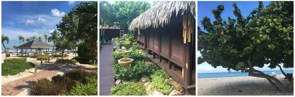 Wanderlust-blog-Manchebo-Aruba-Resort