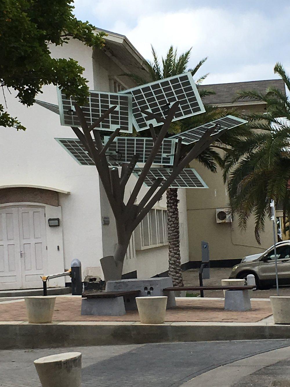 Wanderlust-blog-Aruba-sustainability-solar-tree