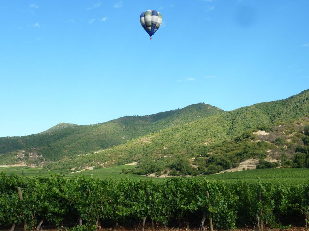 Wanderlust-Travel-blog-Vik-Chile-vineyard-hot-air-balloon-ride