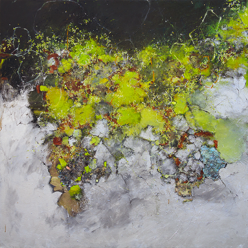 CURTIS BOZIF  - Chicago, IL   Tidepool   oil, enamel, and graphite on canvas