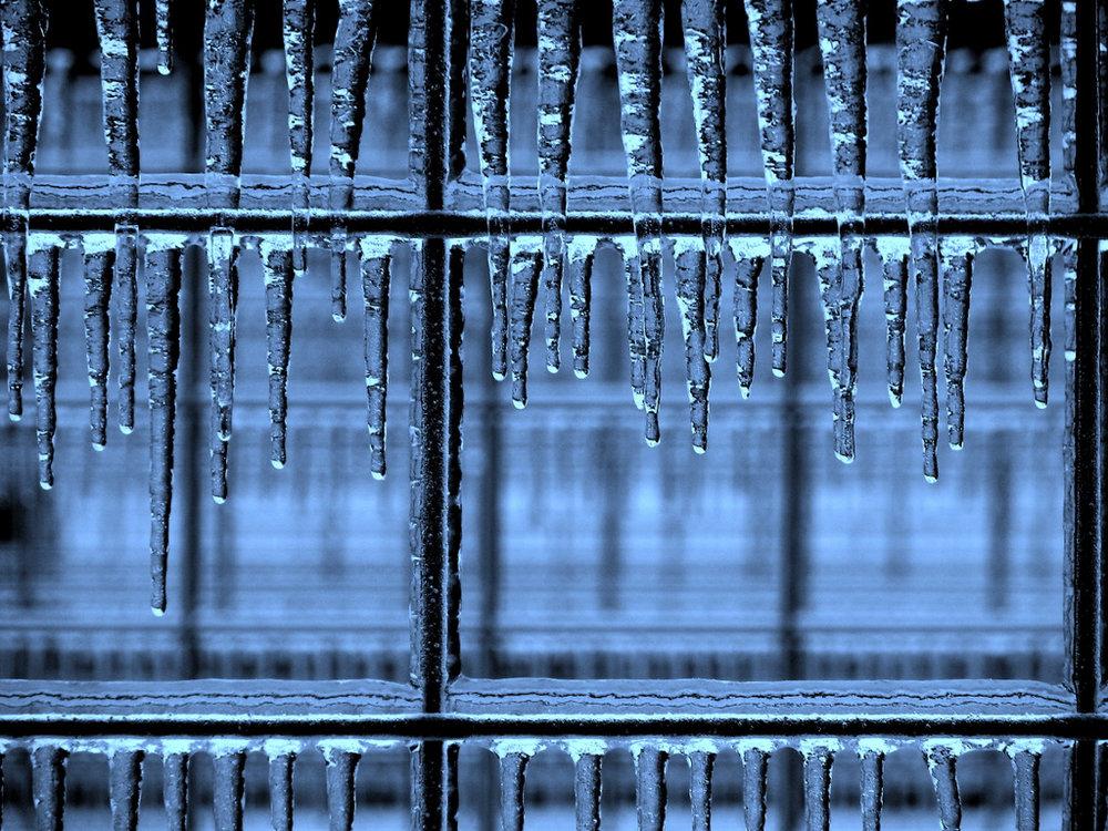 WILLIAM BAILEY  - Macomb, IL   Frozen Farm Fences, Macomb   photography