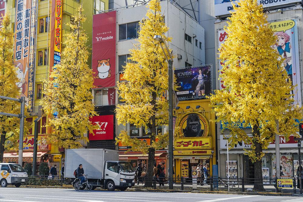 TOKYO 2_SMALL_5.jpg