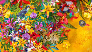 Kew's Colours of Colombia