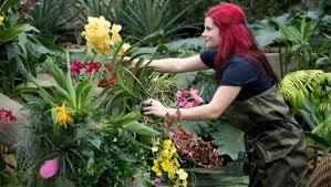 Tending Kew's orchids