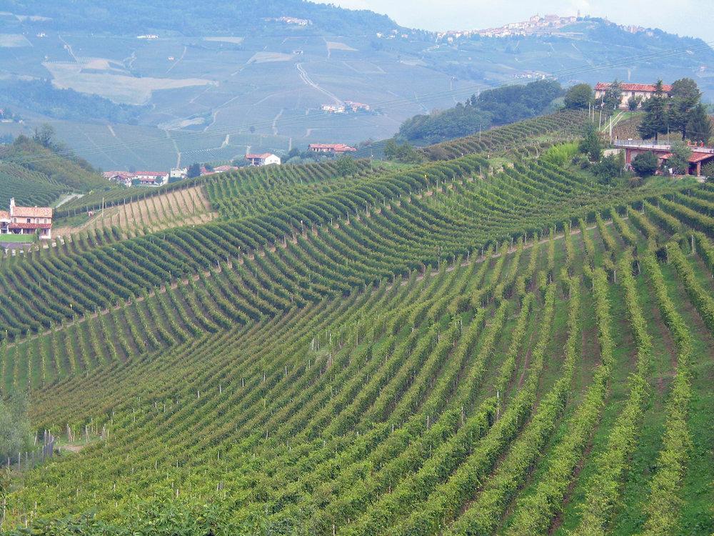 xtreme-piedmont-wine-tour-0961
