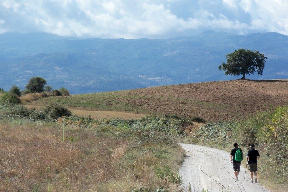 tuscany hiking tours
