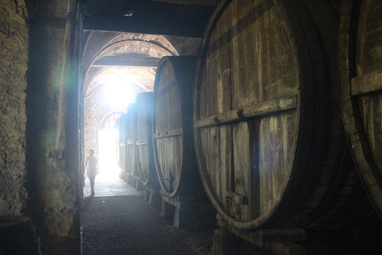 etna winery tours