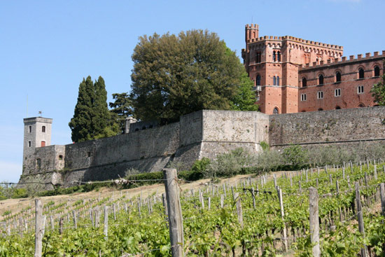 chianti wine tours