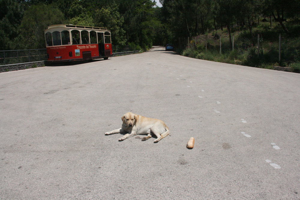 The bus parking lot where the Vesuvio Funicular once stood. (In true Neapolitan style, Fido's stick is a loaf of Italian bread.)