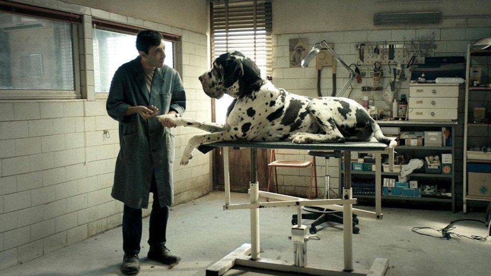 Matteo Garrone's  Dogman