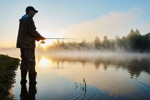 De er fisk i de fleste vannene på Bortelid. Ørret og Bekkerøye i de fleste størrelser er lett tilgjengelig med riktig utstyr.