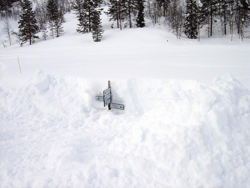 Ole M Homestad - 21 feb 2014 304 cm snø.jpg