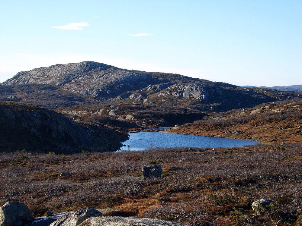 Ole M Homestad - Fra Finndalsfjellet.jpg