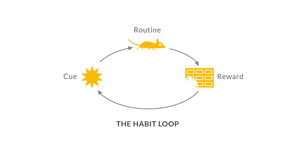 habbit_loop_design.png