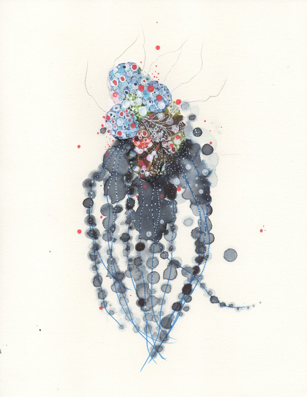 graypearlcephalopod.jpeg