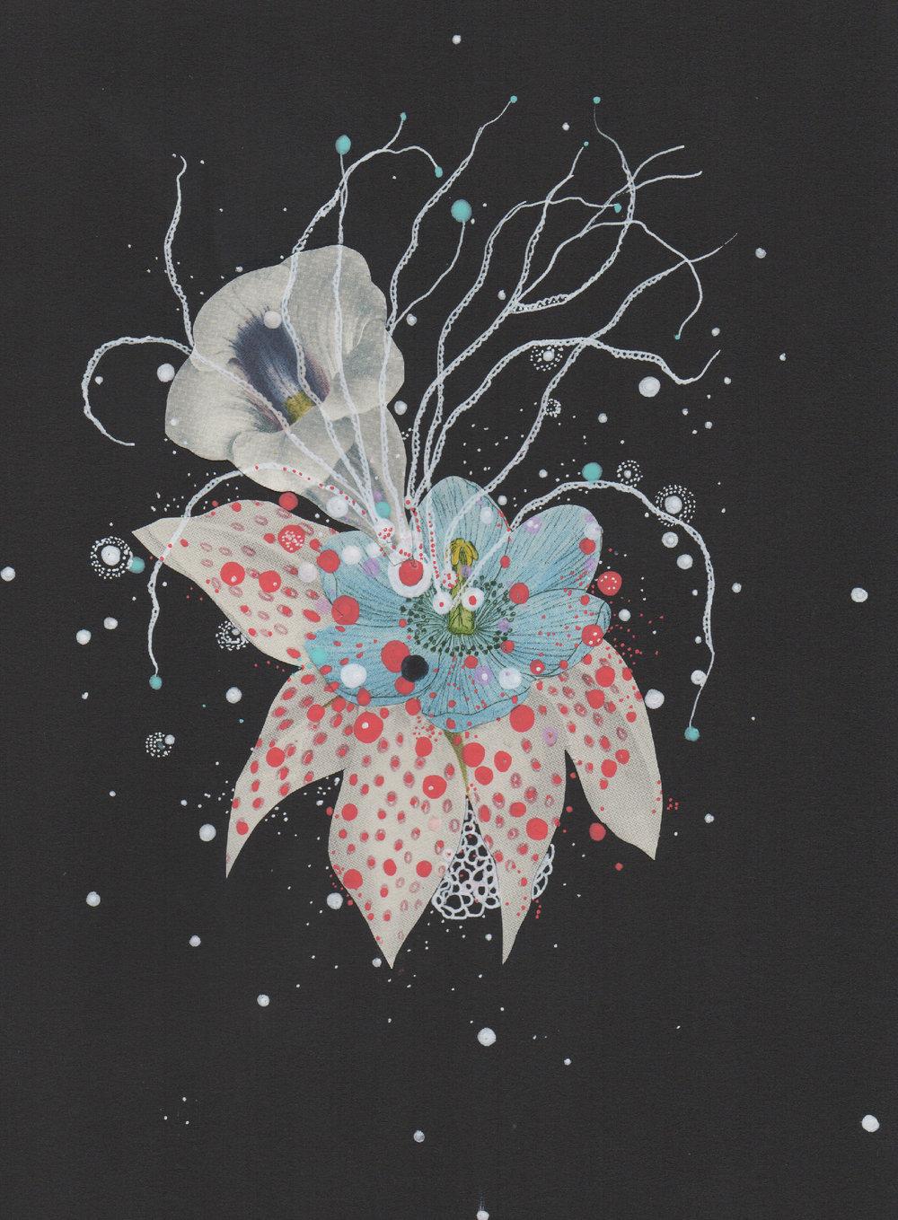 sparklingcelestialanemone.jpg