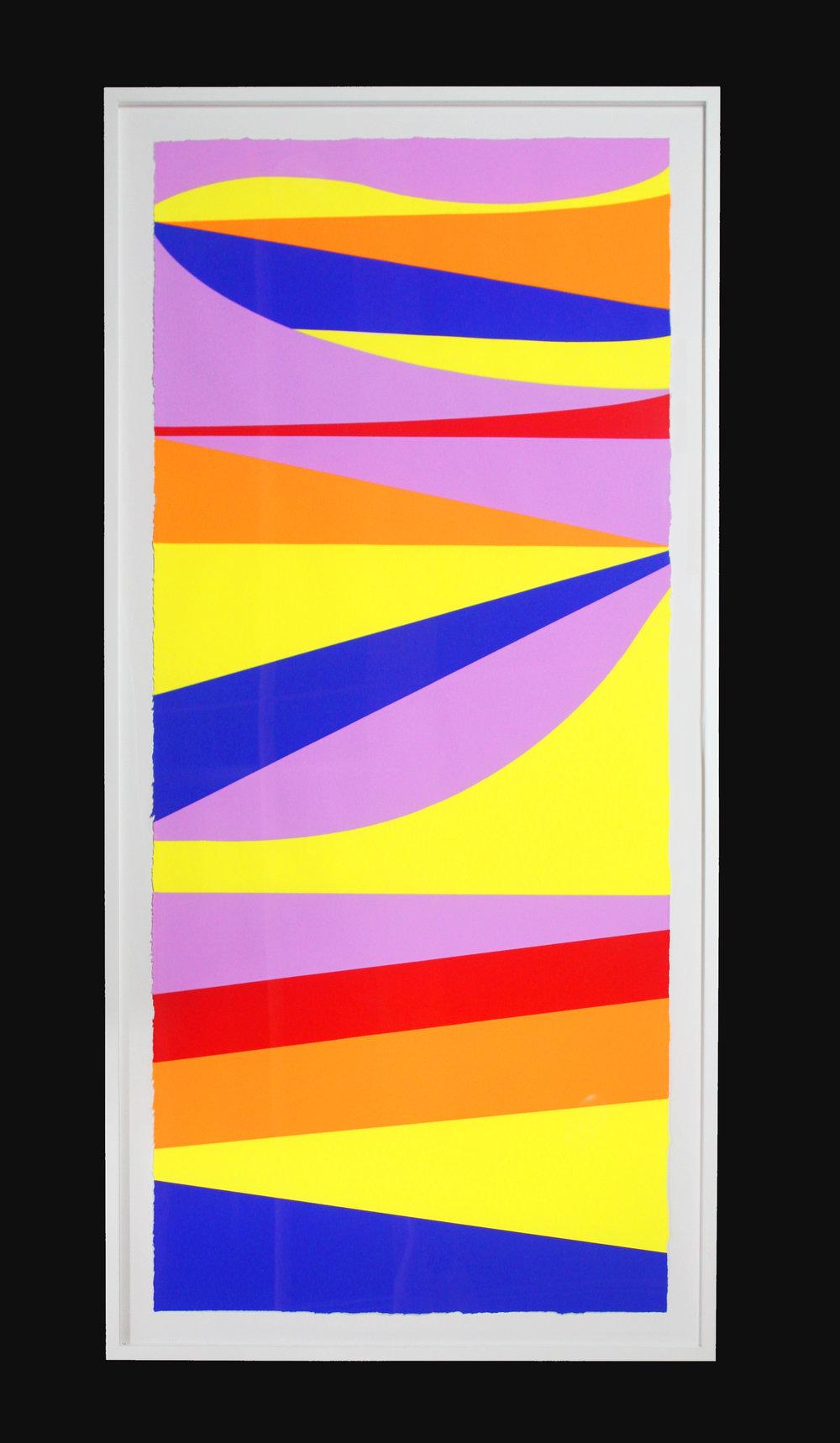 _Let it Slide_ 2.5 x 5.5 ft screenprint on paper 5 color mono print .jpg