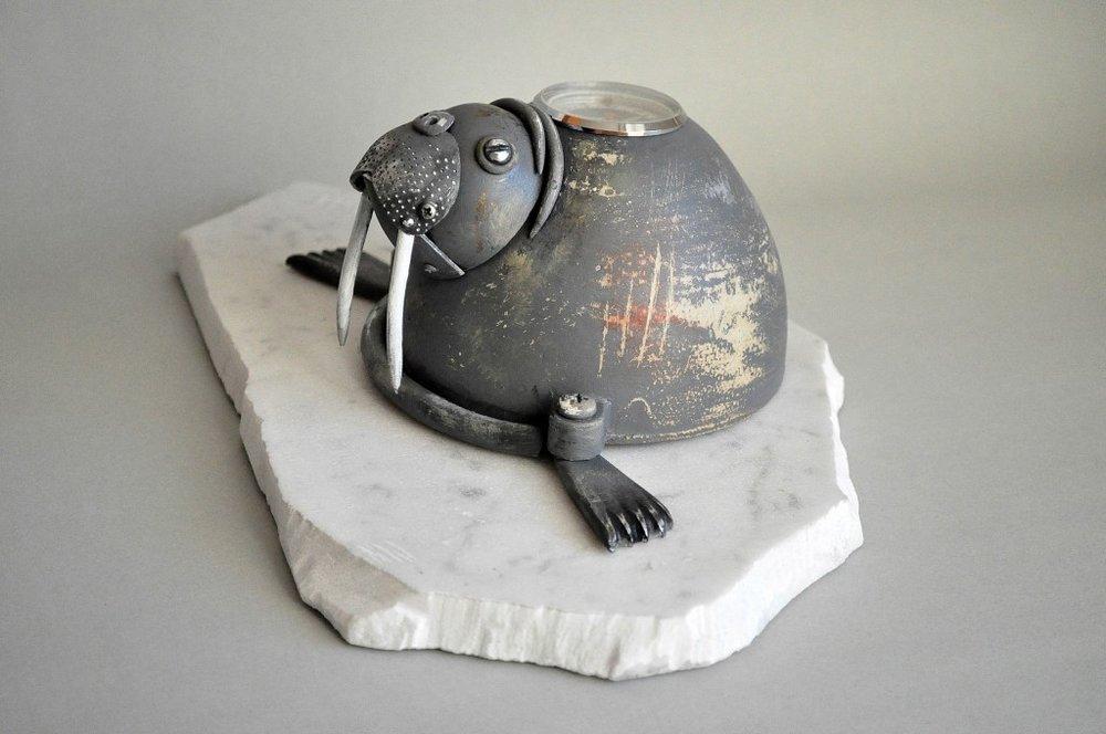 walrus-3-1024x680.jpg