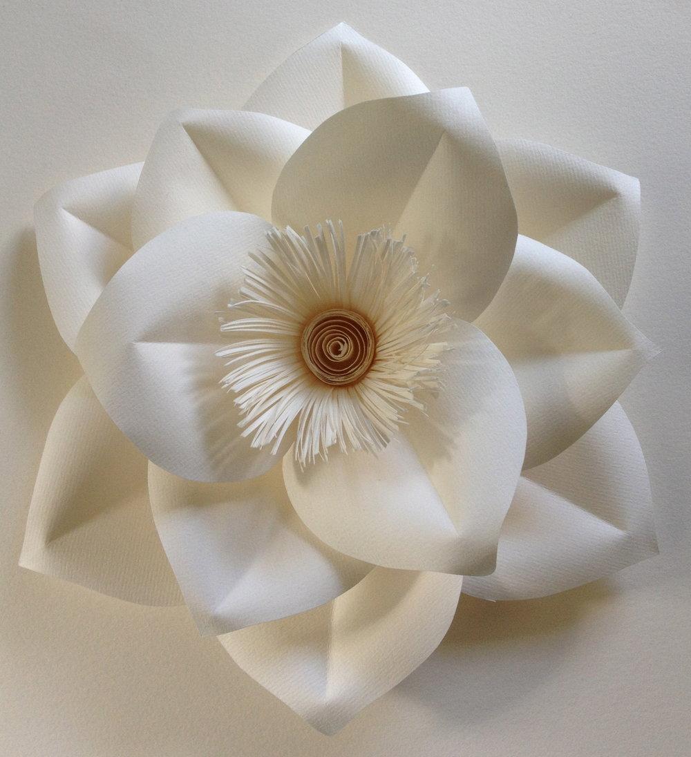dorothy flower.jpg