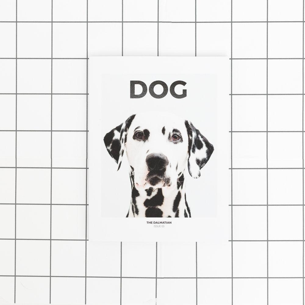 DOG SQ-3.jpg