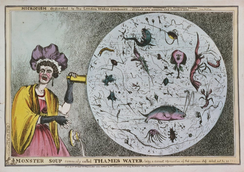 Monster Soup Commonly Called Thames Water, Being a Correct Representation of that Precious Stuff Doled out to Us, William Heath, 1794%2F95 - 1840 Gift of Mrs. William H. Horstmann, 1955.