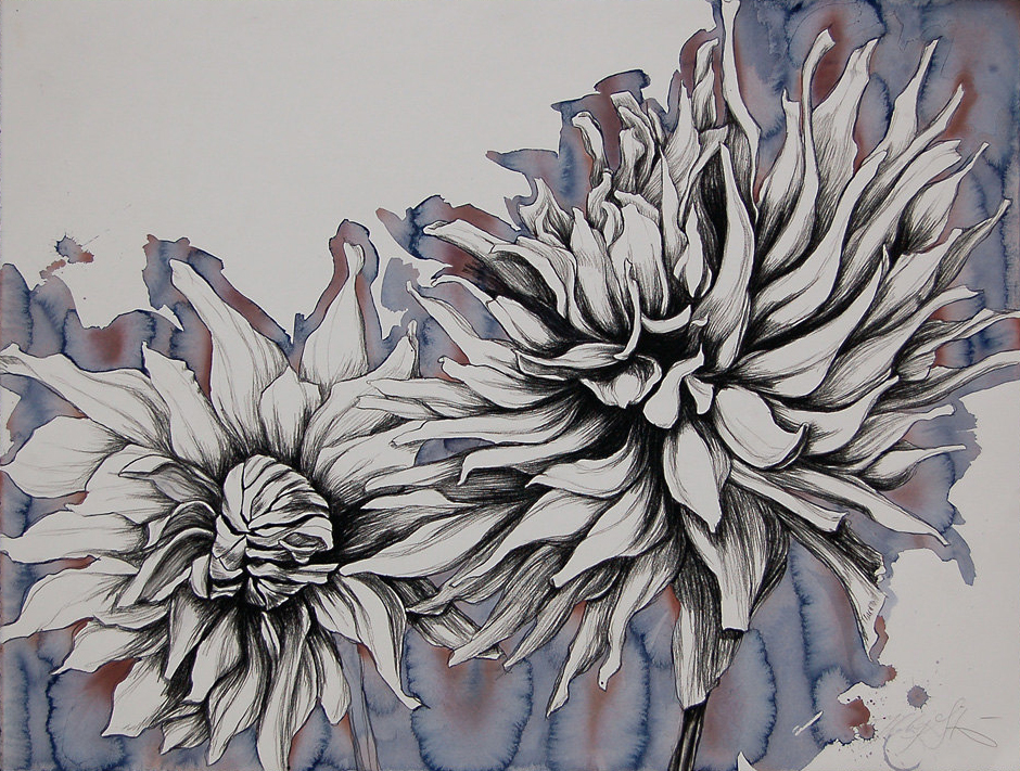 """Summer Dahlia"", Conte crayon and liquid acrylic paint on paper, 30""x 40""-SOLD"