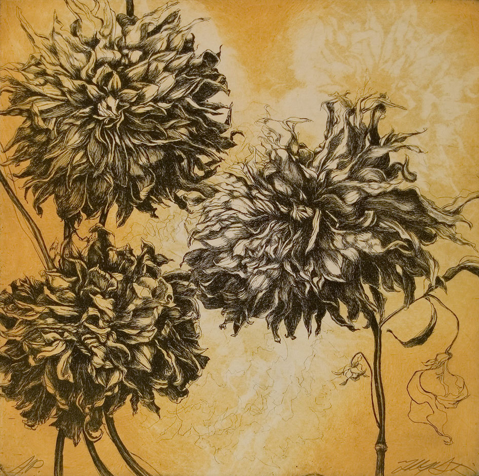 """Fall Dahlias"", Etching, 14.5"" x 14.5""-SOLD OUT"