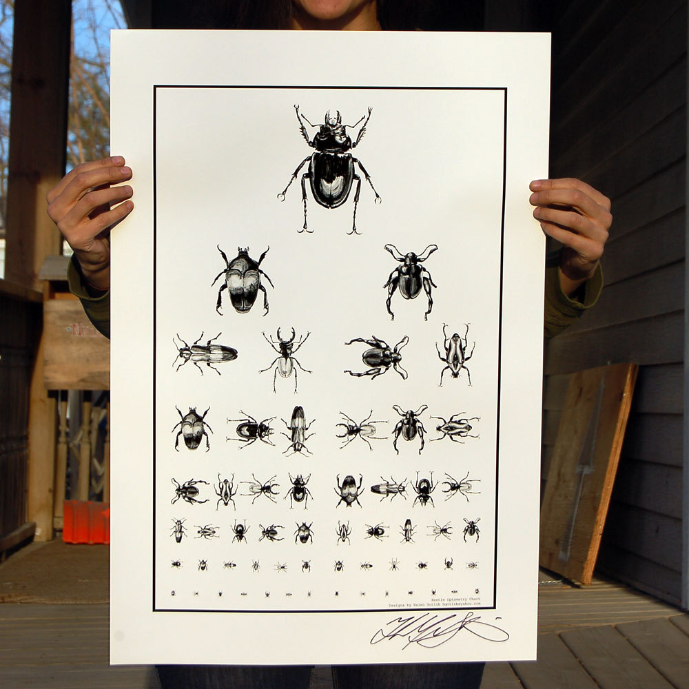 """Beetle Optometry Chart""  To make this   poster I first created 6   oil paintings on mylar of individual beetles. Then I scanned all of them and made a layout on the computer to mimic a eye chart. 19""x28"",  $25.00"