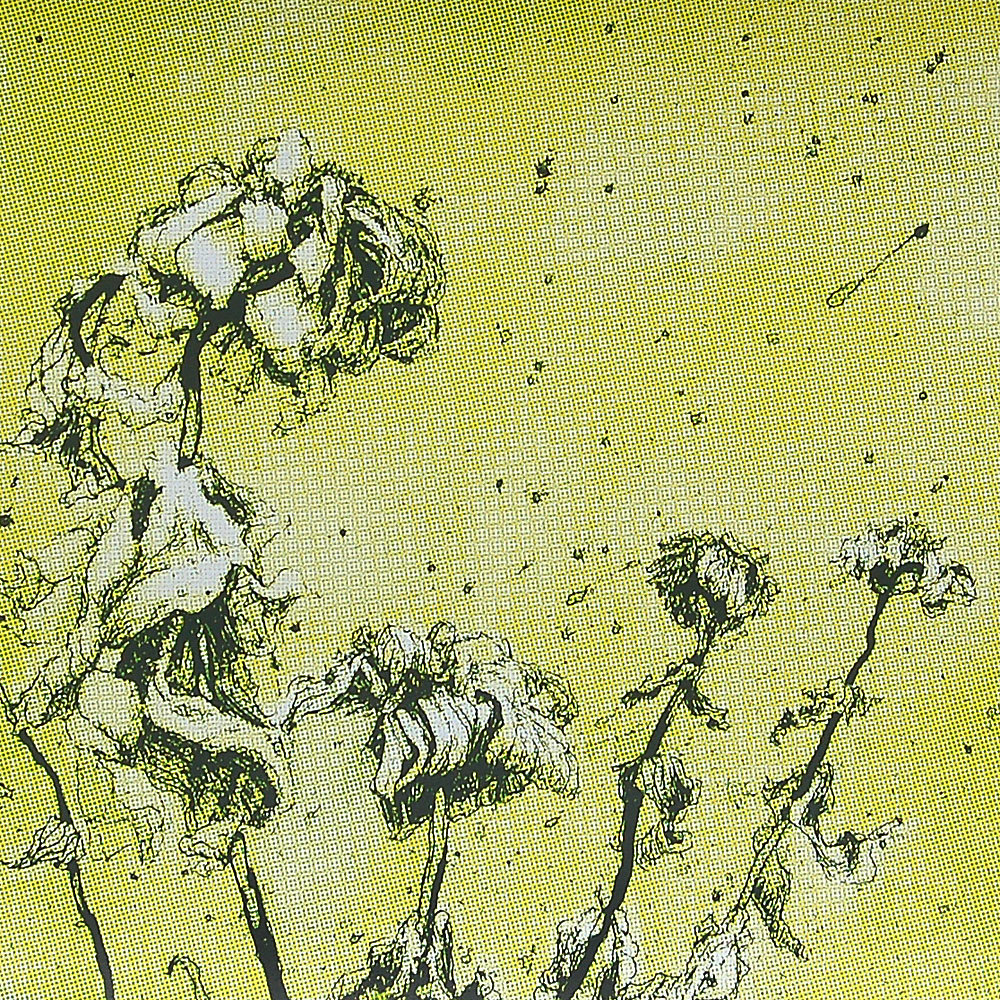 "Detail of ""Fall Zinnias""    3 color silkscreen print - Yellow, green and dark grey on white French Paper.    Limited edition of 200 prints.   20h"" x 39w"",  $40.00"