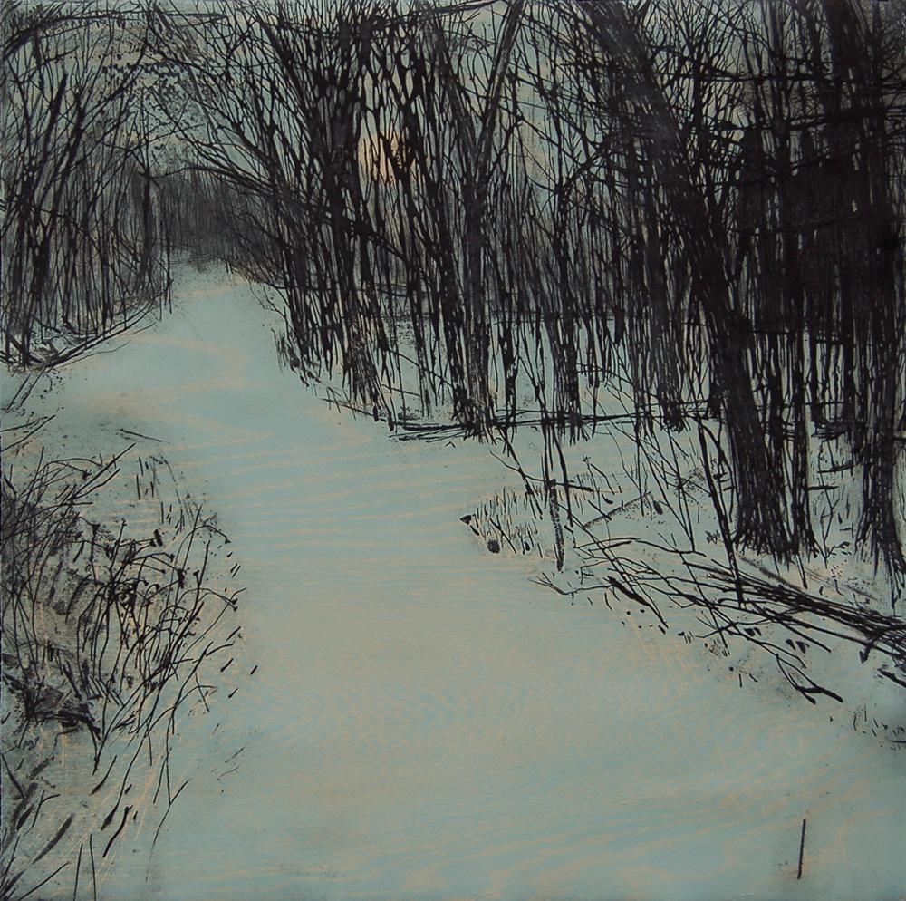 Stinchfield Woods (Blue)
