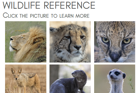 wildlife_reference